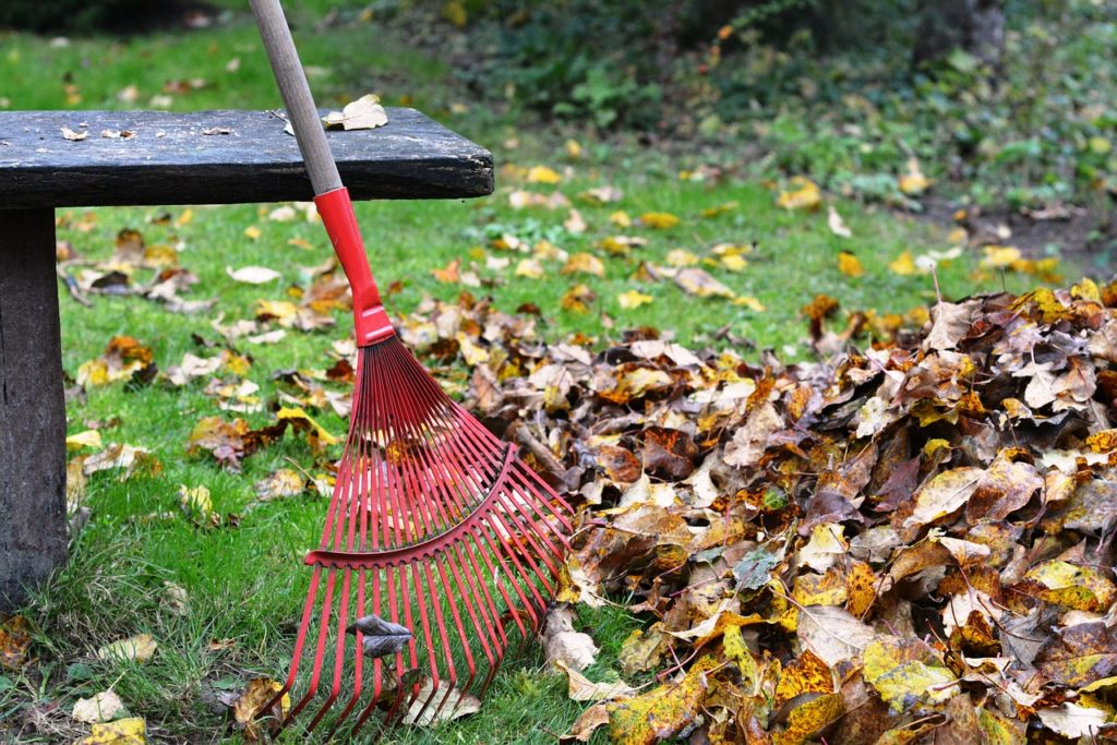 raking and landscaping to add curb appeal