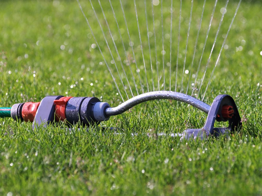 watering the lawn on a schedule